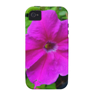 Fushia petunias by SHARLES Case-Mate iPhone 4 Case