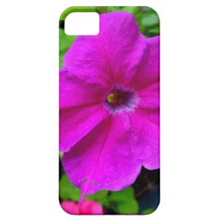 Fushia petunias by SHARLES iPhone 5 Cases