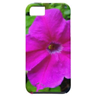 Fushia petunias by SHARLES iPhone 5 Cover
