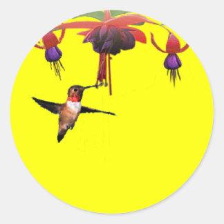 Fushia y colibrí pegatina redonda