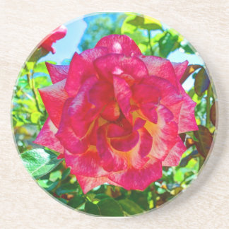 fusión rosada 117HD subió Posavasos Diseño