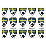 Fútbol de Suecia Comunicado Personalizado