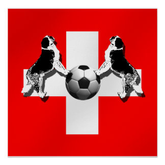 Fútbol de Suiza - mundial 2014 del Brasil Nati Posters
