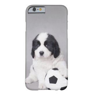 Futbolista de Landseer Funda De iPhone 6 Barely There