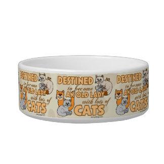 Future Crazy Cat Lady Funny Saying Design Pet Bowl