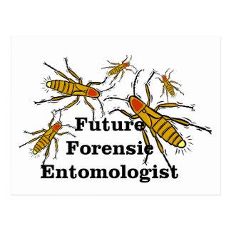 Future Forensic Entomologist 2 Postcard