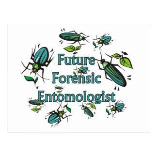 Future Forensic Entomologist Postcard