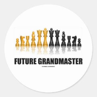 Future Grandmaster (Chess Set) Stickers