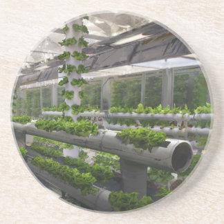 Future Of Farming Coaster