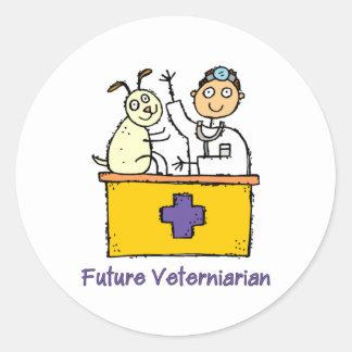 Future Veterinarian - Boy Classic Round Sticker