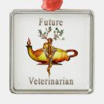 Future Veterinarian Ornaments