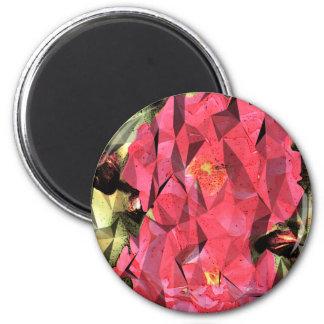 Futurista rosado del cubista del extracto de los imán redondo 5 cm