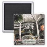 Futuristic Architecture Shopping Singapore Magnet