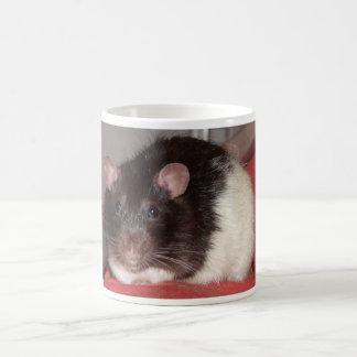 fuzzball morphing mug