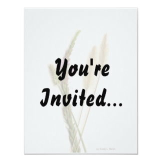 """Fuzzy and purple flowers with green stems 4.25"""" x 5.5"""" invitation card"""