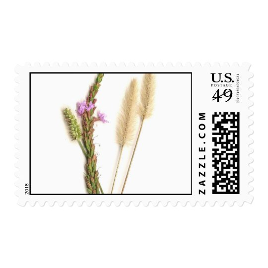 Fuzzy and purple flowers with green stems postage