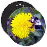 Fuzzy Bee Button