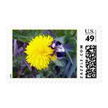 Fuzzy Bee Stamp
