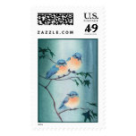 FUZZY BLUEBIRDS by SHARON SHARPE Postage Stamps
