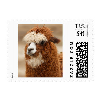 Fuzzy Brown Llama Postage