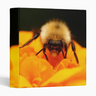 "Fuzzy Bumble Bee 1"" Photo Album Vinyl Binders"