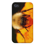 Fuzzy Bumble Bee iPhone 4/4S Case