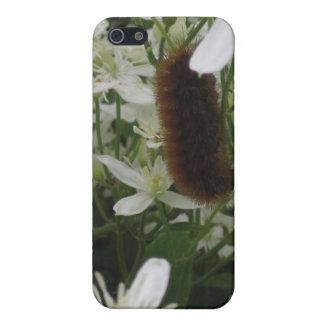 Fuzzy Caterpillar Case