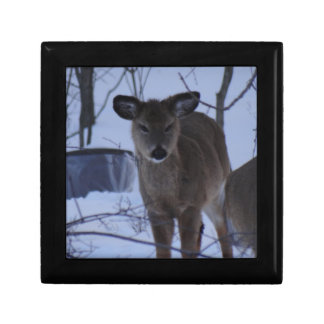 Fuzzy Deer Jewelry Box