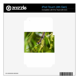Fuzzy Eastern Tent Worm Caterpillar Decal For iPod Touch 4G
