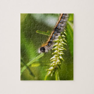 Fuzzy Eastern Tent Worm Caterpillar Jigsaw Puzzle