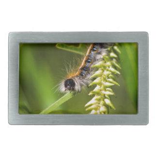 Fuzzy Eastern Tent Worm Caterpillar Rectangular Belt Buckle