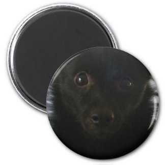 Fuzzy Face 2 Inch Round Magnet