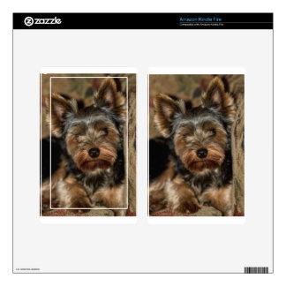 Fuzzy Face Yorkshire Terrier Kindle Fire Skin