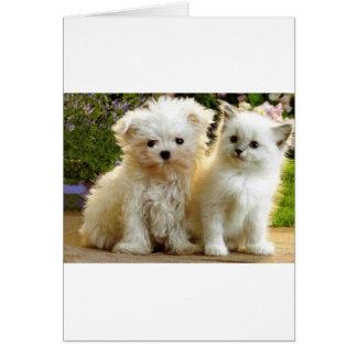 Fuzzy Friends Card