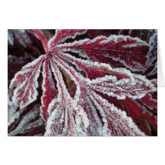 Fuzzy frosty leaf card