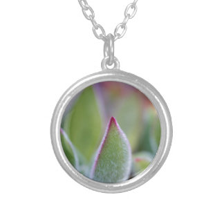 Fuzzy Green Succulent Leaves Macro Silver Plated Necklace