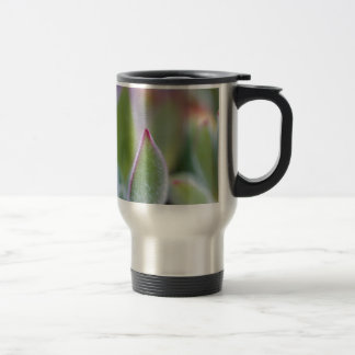 Fuzzy Green Succulent Leaves Macro Travel Mug