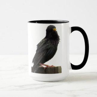 Fuzzy Headed Bird Mug