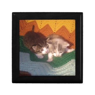 Fuzzy Kittens Gift Box