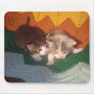 Fuzzy Kittens Mouse Pad