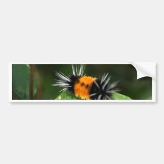 Fuzzy Orange and Black Bug Bumper Sticker