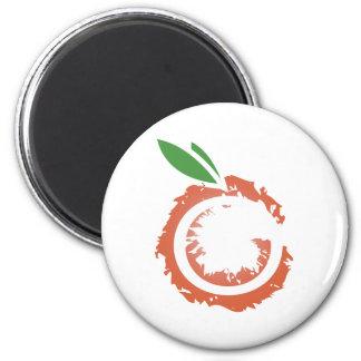 Fuzzy Orange Magnet
