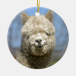 Fuzzy White Alpaca Face Double-Sided Ceramic Round Christmas Ornament