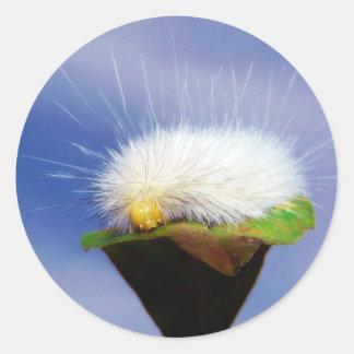 Fuzzy White Caterpillar Classic Round Sticker