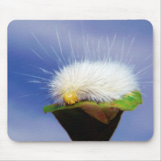 Fuzzy White Caterpillar Mouse Pad