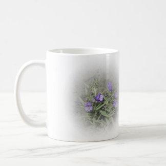 Fuzzytongue Penstemon (Penstemon eriantherus) Coffee Mugs