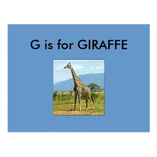 """""""G"""" está para el alfabeto Flashcard de la jirafa Tarjeta Postal"""
