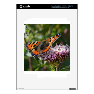 G_red_admiral_001 Skins For iPad 3