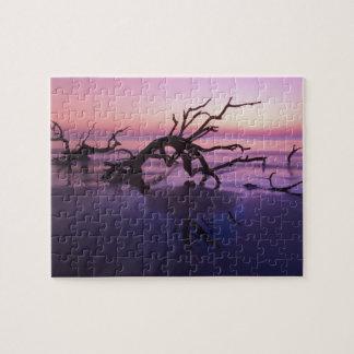 GA Jekyll Island, Tree graveyard on  beach at Jigsaw Puzzle