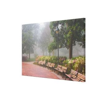 GA Savannah, Azaleas along brick sidewalk and Canvas Print
